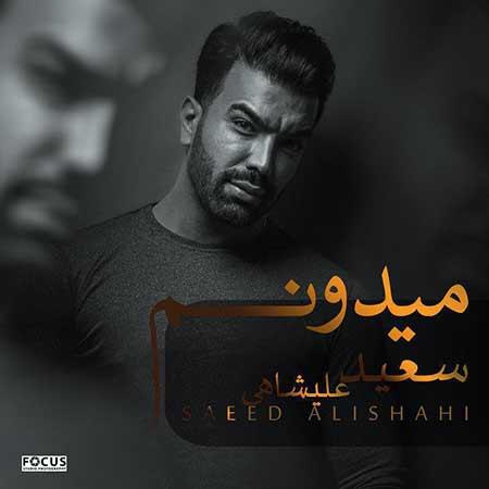 دانلود آهنگ میدونم سعید علیشاهی