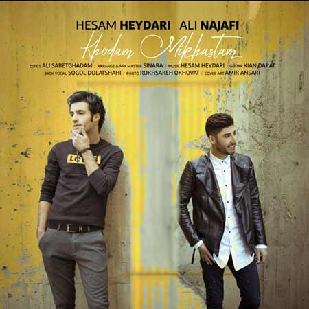 دانلود آهنگ خودم میخواستم حسام حیدری و علی نجفی
