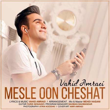Vahid Amraei Mesle Oon Cheshat - دانلود آهنگ مثل اون چشات وحید امرایی