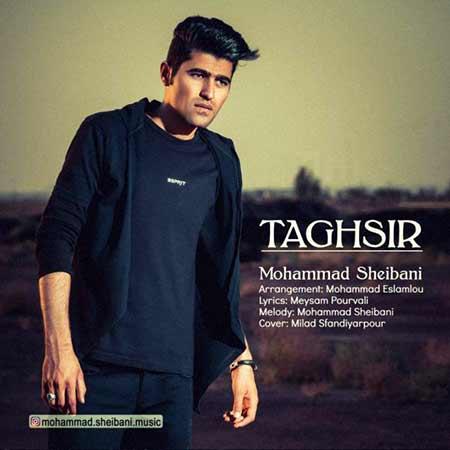 Mohammad Sheibani Taghsir - دانلود آهنگ تقصیر محمد شیبانی