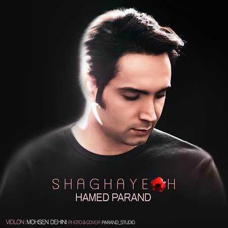 Hamed Parand Shaghayegh - دانلود آهنگ شقایق حامد پرند