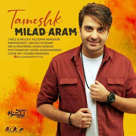 Milad Aram Tameshk - دانلود آهنگ تمشک میلاد آرام